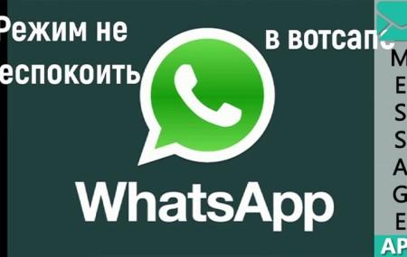 Режим «не беспокоить» в WhatsApp – что будет если его включить?