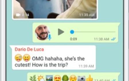 Как пользоваться Whatsapp на телефоне и компьютере