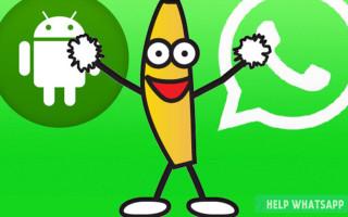 Можно ли отправить Gif-ку в WhatsApp