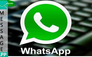 Где Whatsapp хранит фото на компьютере?
