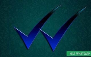 Что означают галочки в сообщениях Whatsapp: серые и синие галочки