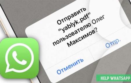 Как отправить PDF-файл по Whatsapp на Android или iPhone