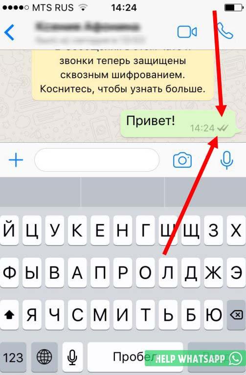 что означают две серые галочки в whatsapp