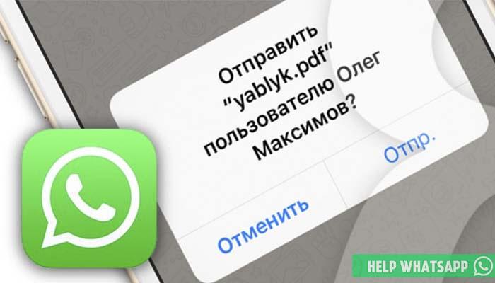 pdf whatsapp
