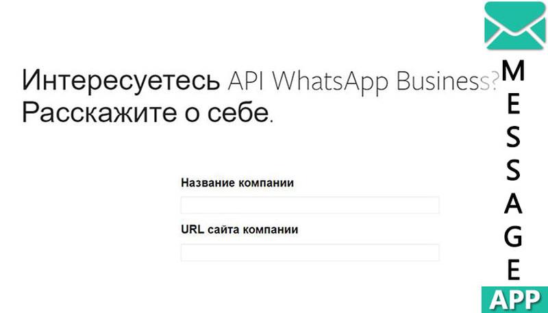 whatsapp api