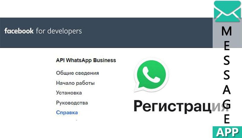 https api whatsapp com send phone